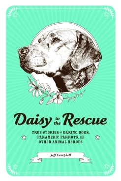 DaisytotheRescue_cover
